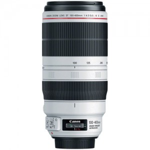 Canon EF 100-400mm 4.5-5.6L IS II